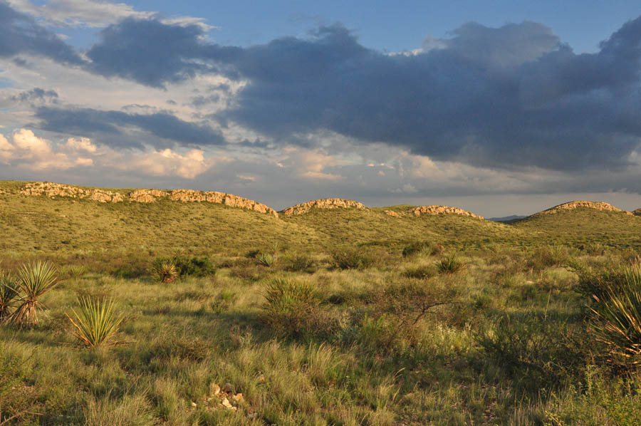 Brewster County Texas
